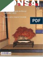 Bonsai Pasión Núm. 3