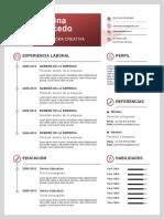 Curriculo 1 Pagina
