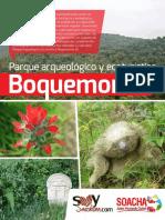Boquemonte