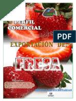 252074718 Proyecto Exportacion de Fresa
