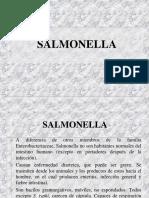 13.2.Salmonella