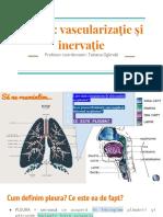 Radu Matei Fiziologia Respiratiei Ventilatia Mecanica Reglarea  Respiratieie