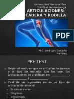 Cadera y Rodilla