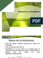 Fotosíntesis1.pdf