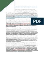 Resumen Transcricpion Traduccion