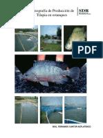 151768105-monografia-de-tilapia-pdf.pdf