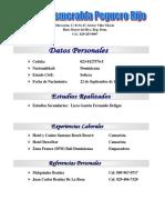 Curriculum Digna Esmeralda Peguero Rijo