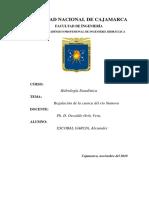 regulacion de la cuenca del rio namora final.docx