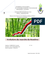 Evolution-du-marché-de-bambou-SAMBOTIANA-Anselme-2013.pdf