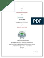 Industrial Engineering Report Final