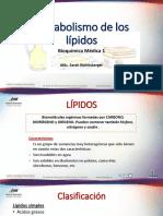 11. Metabolismo lípidos