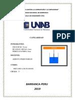CAPILARIDAD.pdf