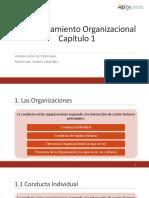 Capitulo 1 - Comportamiento Organizacional