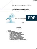 Auditoria_Perícia_Ambiental.pdf