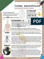 drosophila   alzheimers