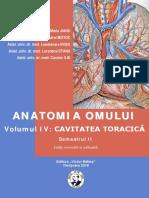 Anatomia 20iv 20torace