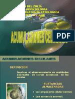 Acumulos intracelulares2014[1]