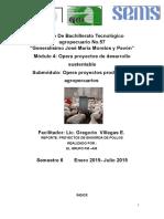 279886160-Informe-Proyecto-Pollos-de-Engorda.pdf