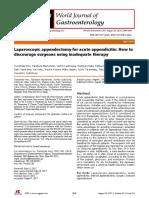 Laparoscopic Appendectomy Study