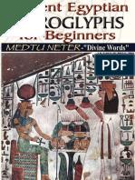 Ancient Egyptian Hieroglyphs for Beginners - Medtu Neter.epub