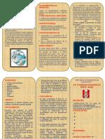 Triptico Destrucción de La Capa de Ozono Por Contaminación Editar Caratula (1)