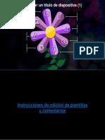 Agregar Un Título de Diapositiva (1)