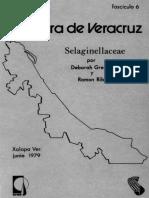 Selaginellaceae