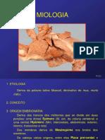 Aula de Miologia Biologia