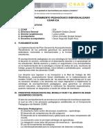 Plan de Acompañamiento Individualizadohistoria y Geografia 2019