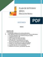 Resumen Plan 2011