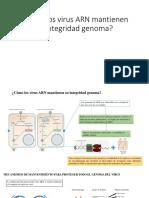Cómo Los Virus ARN Mantienen Su Integridad
