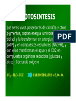 Clase 9 - Fotosintesis