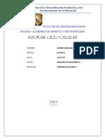 268431754-Indice-mitotico-en-Cebolla.docx