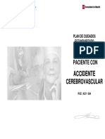 pc4_ACV.pdf
