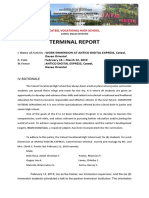 Terminal Report Immersion-css