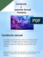 conducta-sexual-humana.pptx