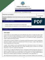 Práctica 06 Electrónica I 19-19