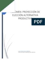 Resúmen Proyección de Elección Alternativa Productiva