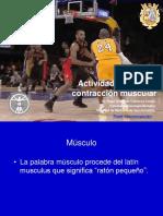 Actividad Eléctrica Muscular y Contracción 2019