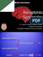 Receptores Sensoriales 2019