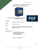 Planificacion de La Auditoria Fnaciera y Riesgos de Auditoria, El Programa de Auditoria, Objetivos Aplicables a Cada Rubro y Memorando de Auditoria