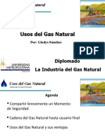 Usos Del Gas Natural
