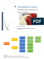 Composición Química de Las Aves