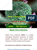 Nipa Virus Infections