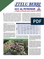 Proyecto de gasificación