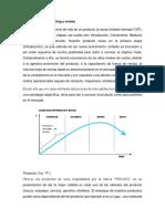 Estrategias, canales y distribución del producto .docx