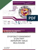 2 EuroAirport Bale-Mulhouse PAPI