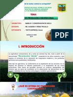 SISTEMA DE PRODUCCION CONVENCIONAL.pptx