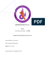 Reporte de Práctica # 1 - Acosta Barraza.pdf