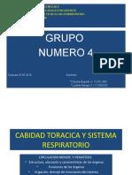 Cabidad Toracica y Sistema Respiratorio Luse